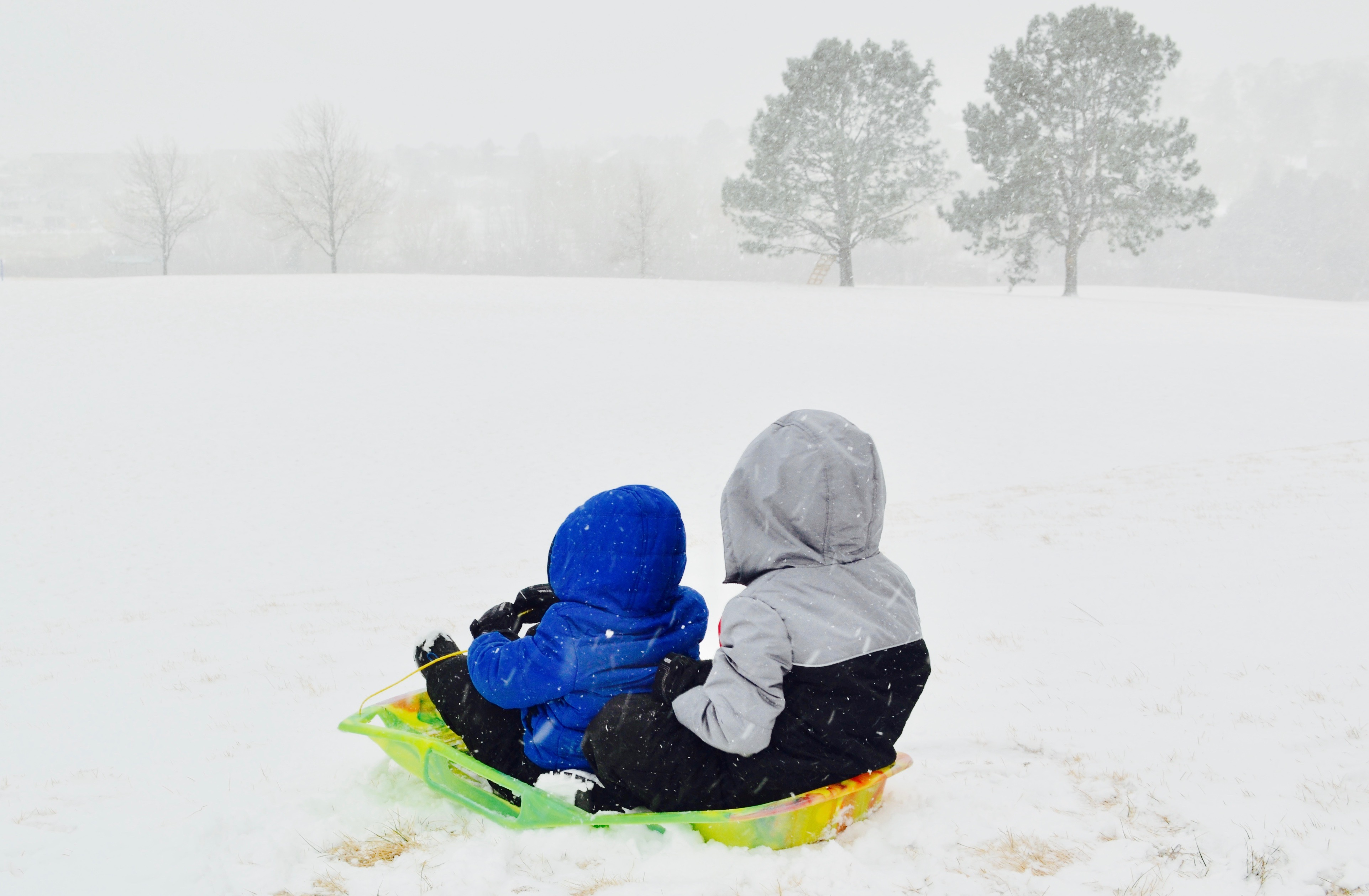 Brothers sledding down the hill during a snowstorm.
